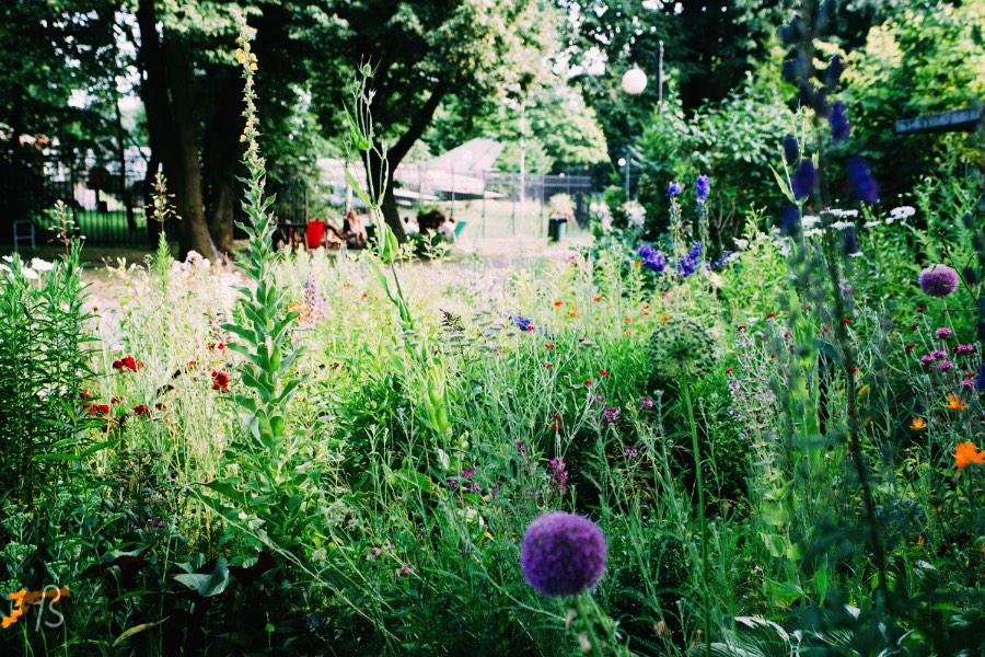 Park Cytadela Poznan 6