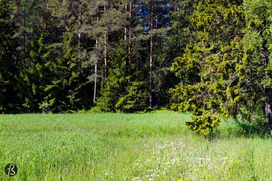 Another place that you have to visit while you are in Lappo is the island of Björkö. We took our bikes there and it was beautiful to just be there in the middle of the forest without any human sounds. Again, we saw more deers trying to cross the roads than cars anywhere. If you want to feel like you are alone in the world, Björkö is the place to be.
