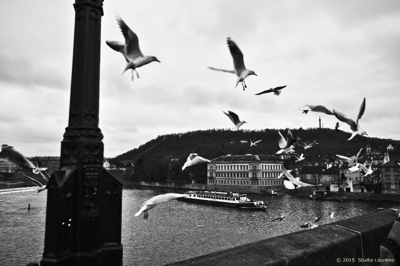 Surrounded by legends and with its beautiful architecture Charles Bridge aka Karluv Most is one of the main tourist destinations in Prague.