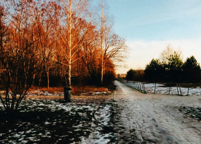 Our visit to Nordbahnhof Park during Winter
