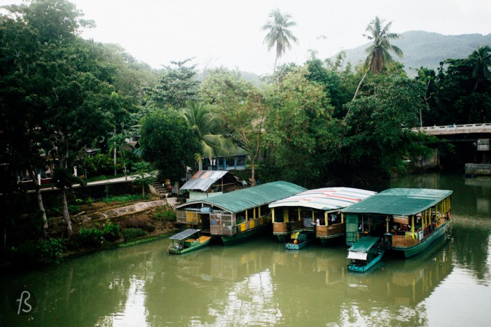 The Loboc River is a giant and beautiful river crossing Bohol. It is born in the middle if the island, but when it gets closer to the village of Loboc, is where the action starts. There are floating restaurants that can take you along the river showing you everything. Some even have locals dancing traditional music. If you think this is a bit boring, you can try to do the river by SUP (stand up paddling). I didn't do that since I only found out about it after I left Bohol. I know, really sad. Loboc River's nature is fantastic. It is a must do while you're in Bohol.