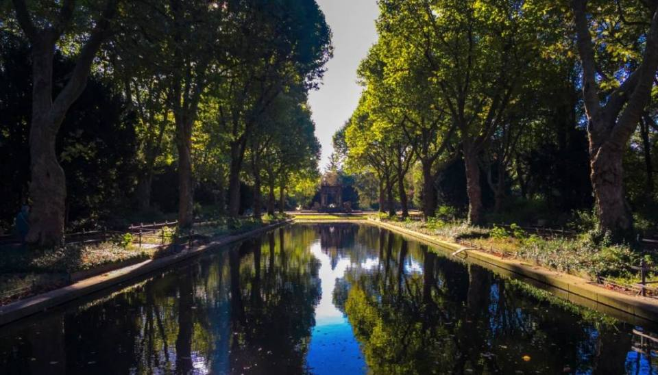 You can find the Von der Schulenburg Park in the southern part of Sonnenallee, in Neukölln. Known to the people who live around it as Schulenburg Park this green space in Berlin is one of the many hidden gems this city has that hide in plain sight. At least, this is how I felt when I, once again, cycled in front of the park and, finally, decided to see what is in there.