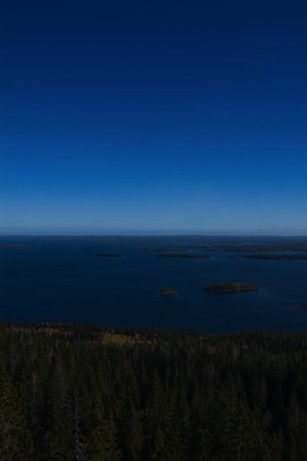 In all seasons the Koli National Park has his own beauty and poetry. The deep winter brings ice on Lake Pielinen and creates the longest ice bridge in Europe. With the reborn of nature in spring, the park turns into hundreds of colors thanks to the flowers. It is also incredible to experience the light and the midnight sun in summer.