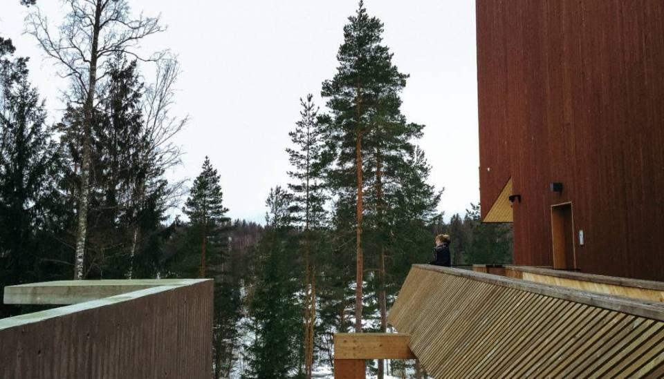 Ten Reasons to Love Finland