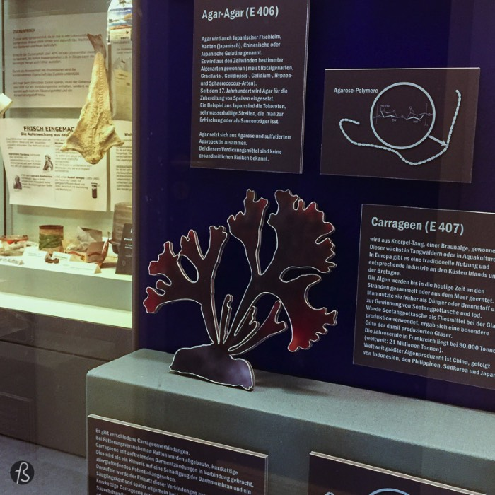 For us, the exciting part of the German Food Additives Museum was how it tries to tell the world about the food we eat in a focused way. There is even a scanner that you can use on some barcodes to learn what is inside the products you buy. The museum shows the history behind what we have today and the current landscape of food additives in an informational way. Something that we were delighted to see since the most information you have about this topic goes to the political aspect fast.