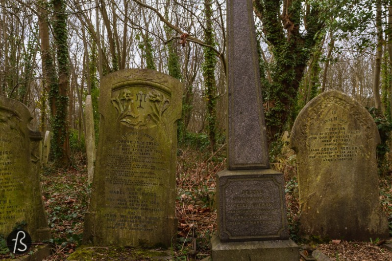 Highgate Cemetery Group Tours