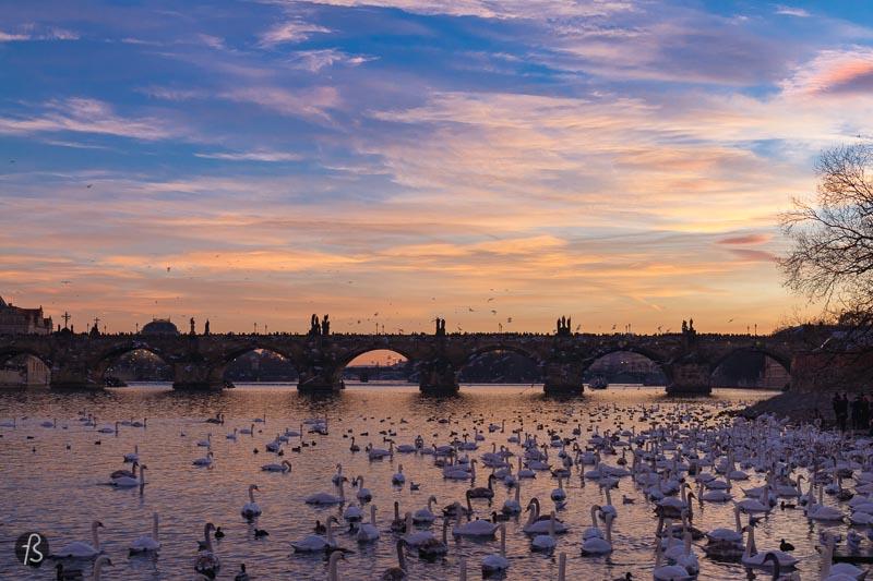 Prague Sunset: My Favorite Spot to Capture the Sunset Over Prague