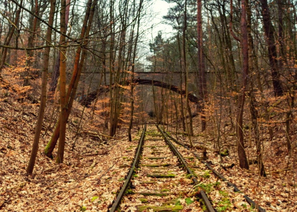 The Bridge in Dark and the abandoned train tracks