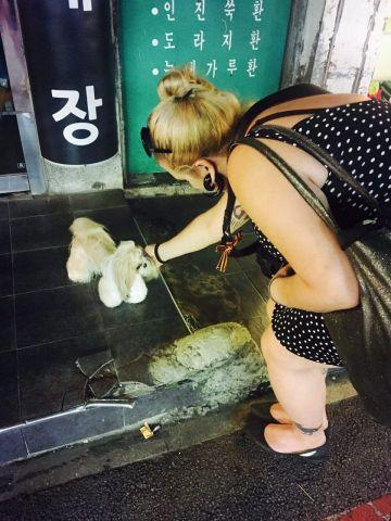 marcela faé and a dog near Gyeongbokgung